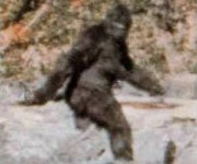 Wanted: Samples for DNA Testing to Prove Bigfoot's Existence