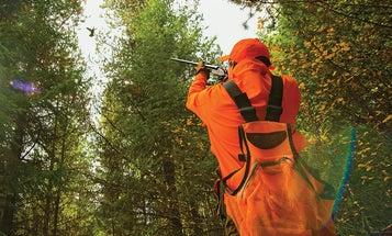 Ruff and Tumble: Hunting Late-Season Ruffed Grouse