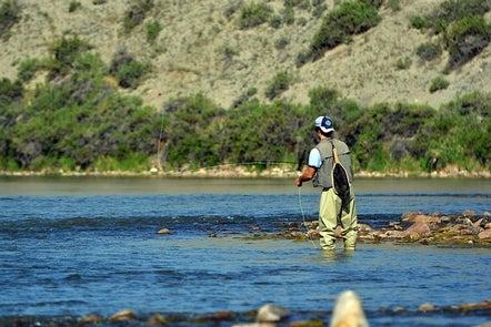 fishing north platte river