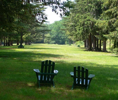 two chairs on a grassy field