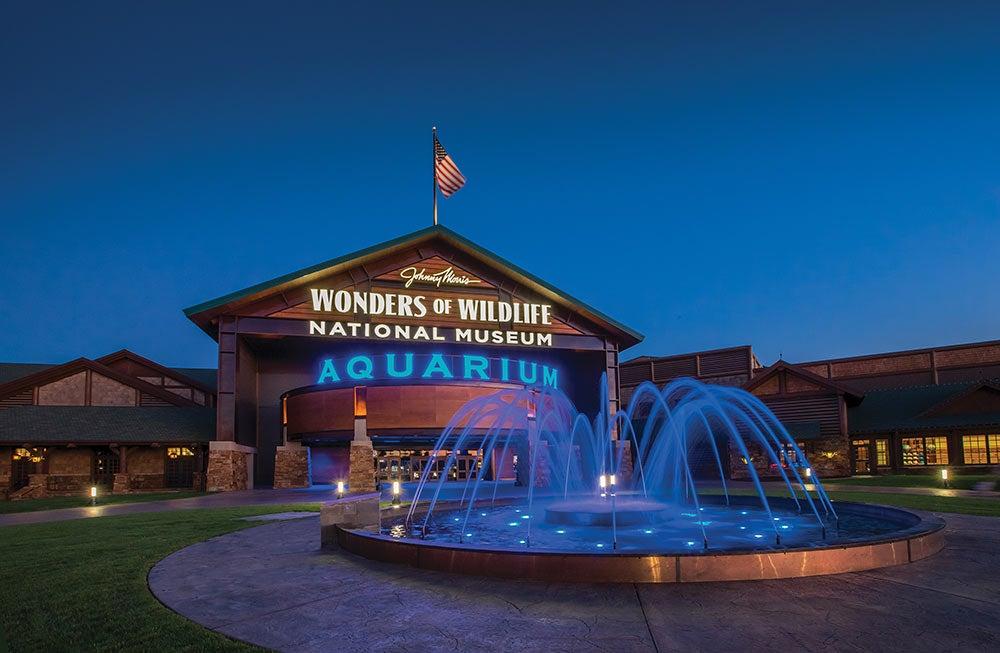 The Wonders of Wildlife