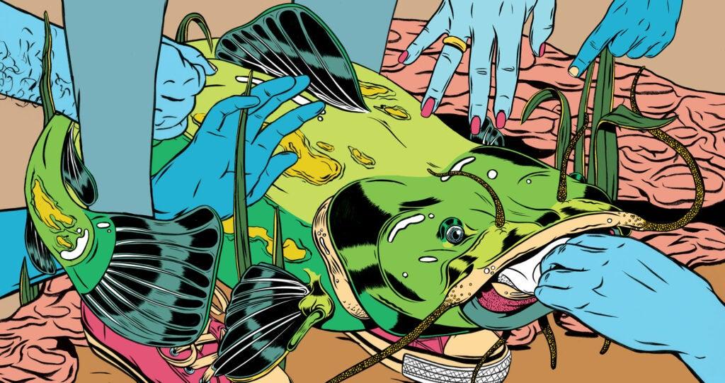 Illustration of a catfish noodling event.