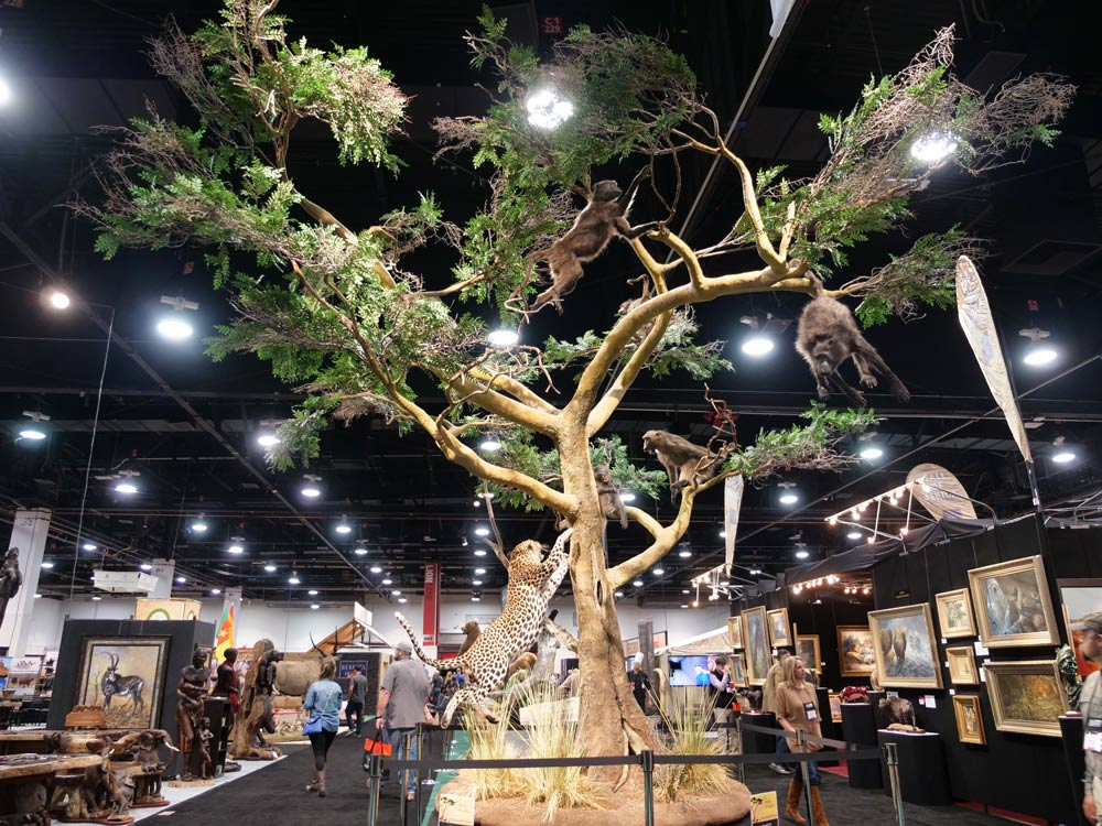 sci convention leopard hunting baboons taxidermy