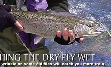 Fishing the Dry Fly Wet