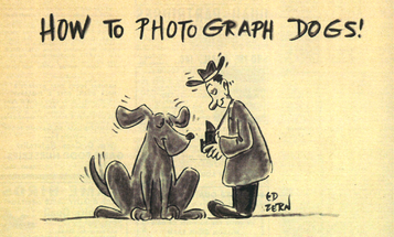 F&S Classic: How to Photograph Dogs!