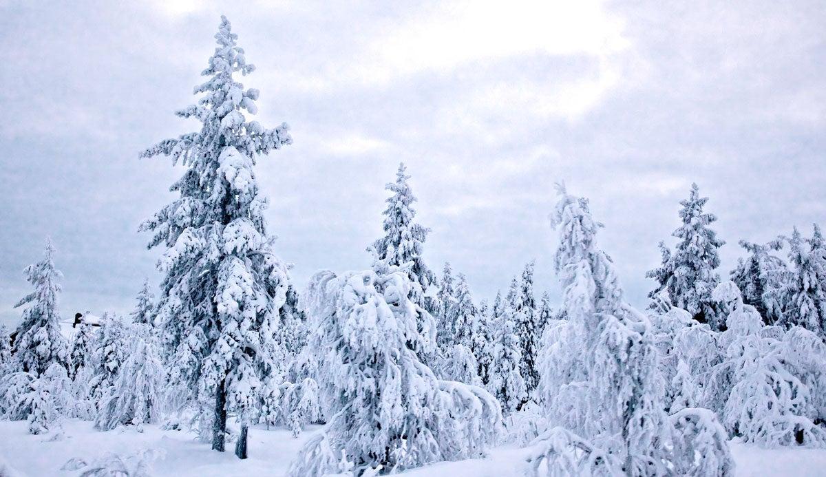 Field & Stream's Five Laws of Winter Survival