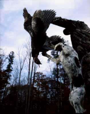 Hunting Turkeys with Dogs