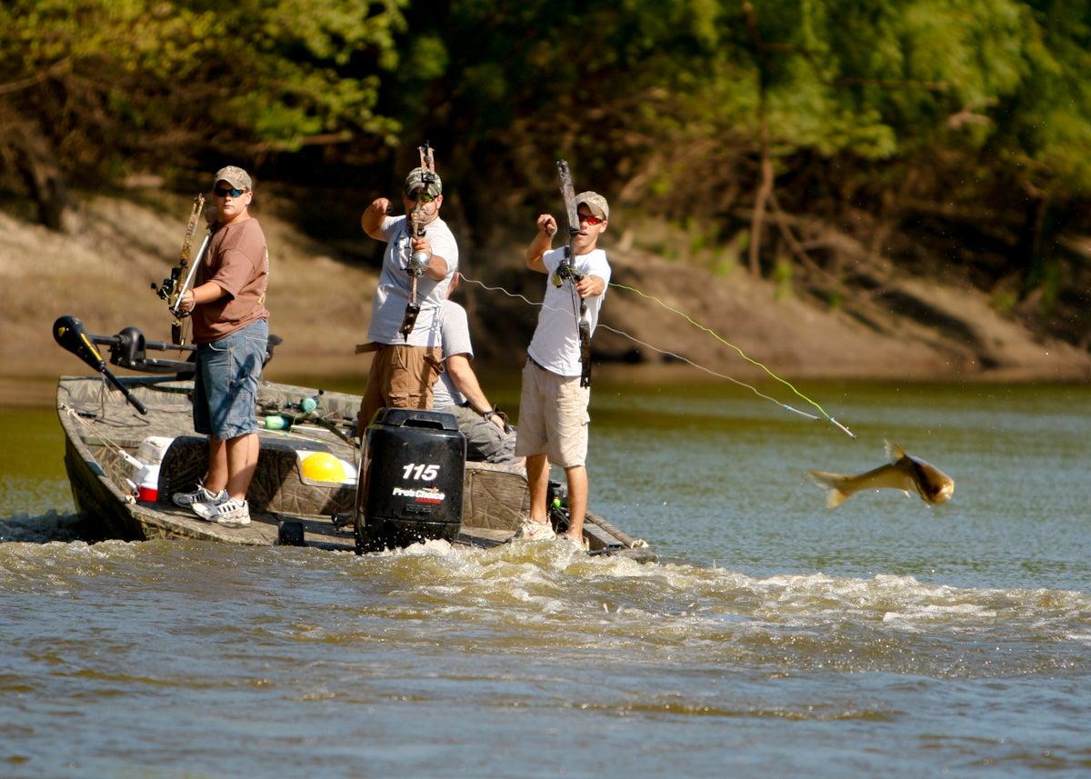 Aerial Bowfishing for Bighead Carp in Missouri's Lamine River