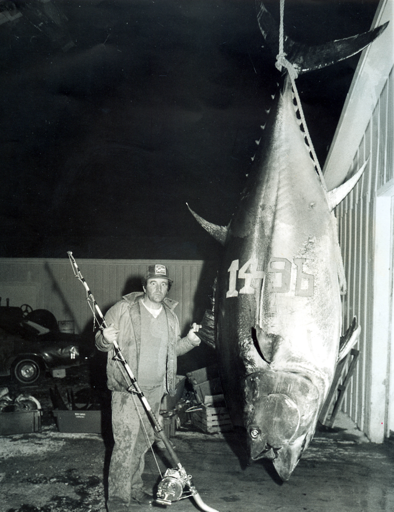 igfa records, record fish, world record fish, biggest fish, fishing records, big game, big fish