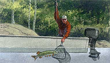 Net Fish by Yourself