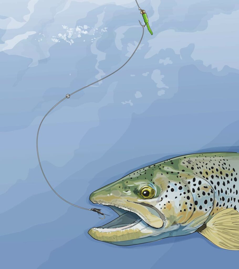 Trout Fishing two-toned rig