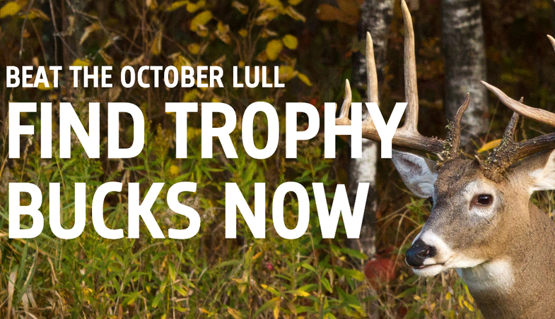 Beat The October Lull: Find Trophy Bucks Now