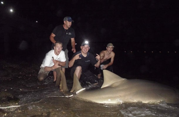 How a Florida Shark Angler Hooked Three Huge Sawfish In Three Nights