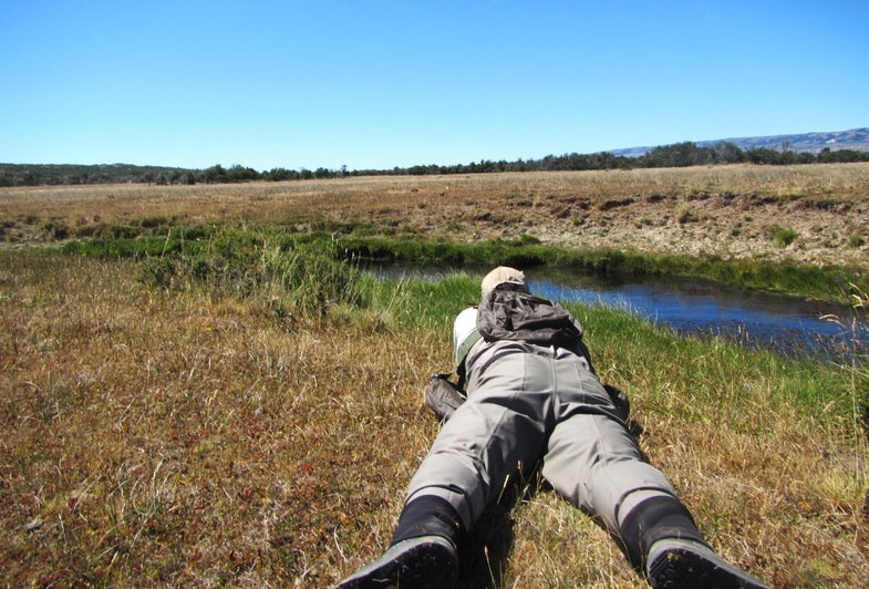Why You Should Keep a Low Profile While Fly Fishing