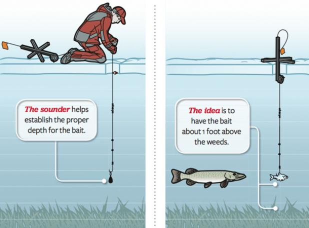 Ice Fishing: Tactics for a Better Tip-Up