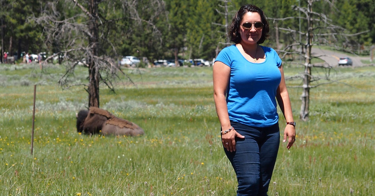 Yellowstone Park Rangers Say Stop Taking Photos with Bison
