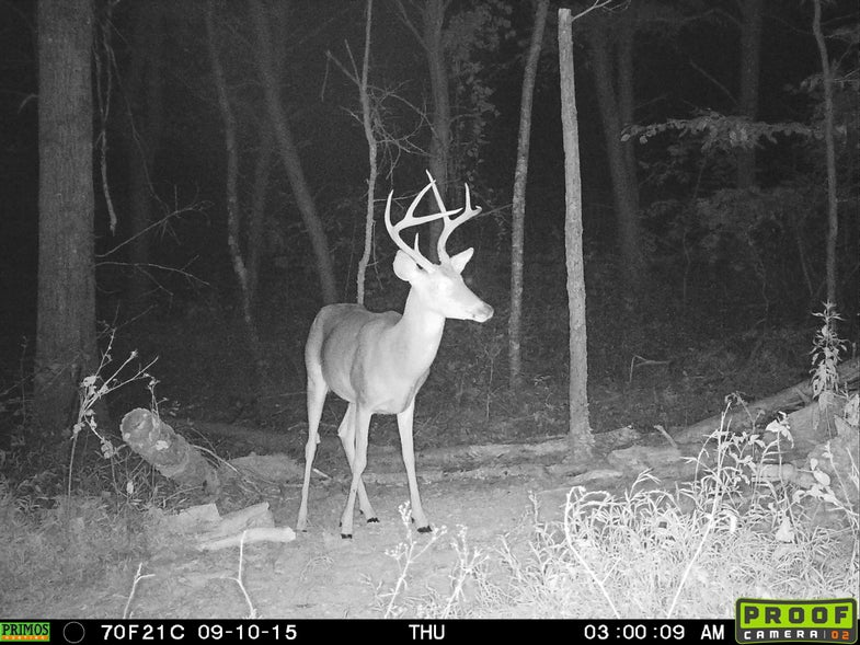 Mid-South Buck from Sept. 10
