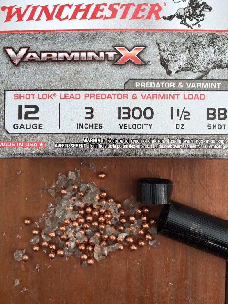 Winchester VarmintX Shotshell