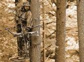 Whitetail IQ Test: Hunting Tactics