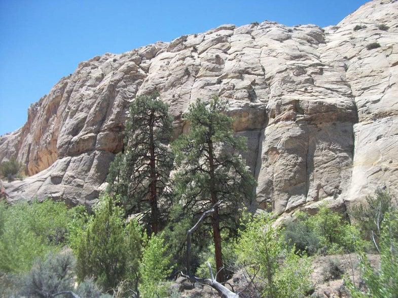 Grey Cliffs at Utah's Grand Staircase-Escalante National Monument