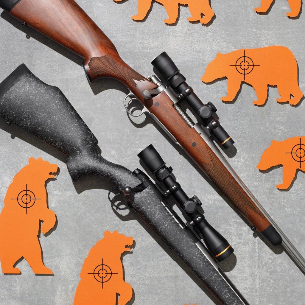 Best Bear Rifles
