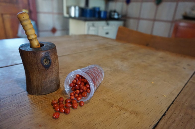 My Current Obsession: Chiltepins Peppers
