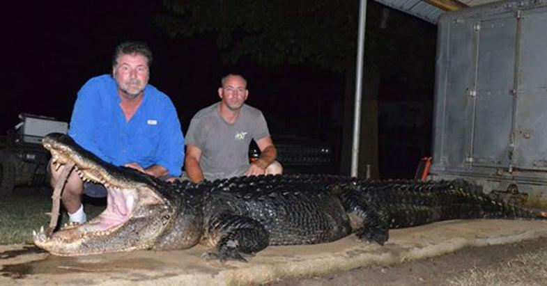 Three Mississippi Alligator Records Broken in 24 Hours