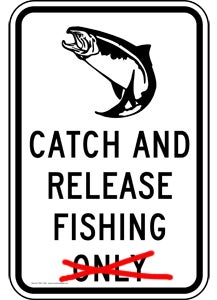 How Catch-And-Release Can Sometimes Work Against The Greater Good Of A Fishery