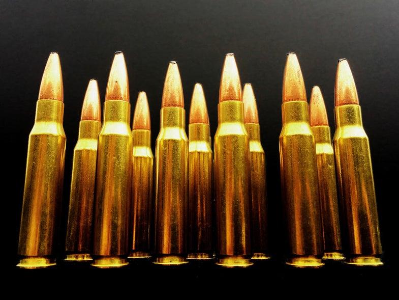 308 winchester rifle ammo