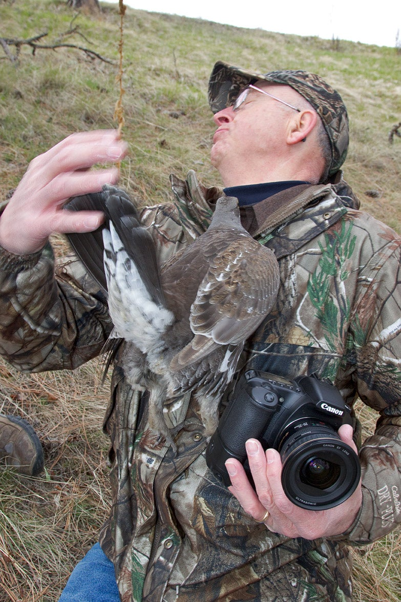 Dusky Grouse Attack Leaves Wildlife Photographer Don Jones With Bloody Lip