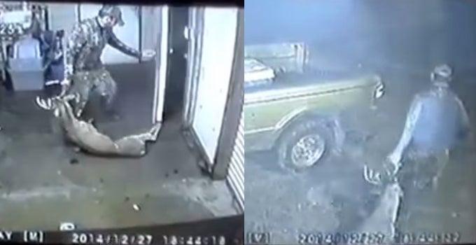 Video: Buck Burglar Caught Dragging Deer from Game Processing Plant