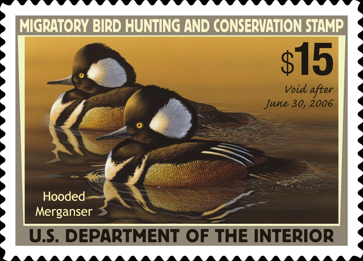 duck stamp, new duck stamp rule, non-game duck stamp,