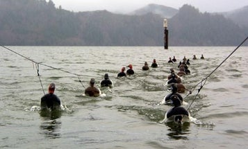 Oregon: Home of the Divers