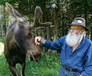 Vermont's Pete the Moose Dies, Game Park Owner Admits to Cover-up