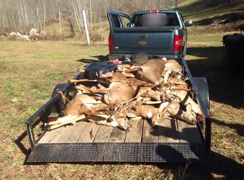 Eighteen Untagged Deer Discovered in Major West Virginia Poaching Bust