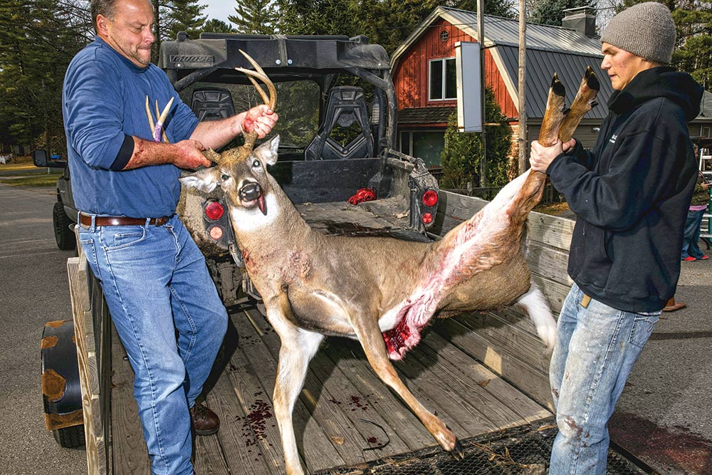 Hauling a buck from the bed of a truck