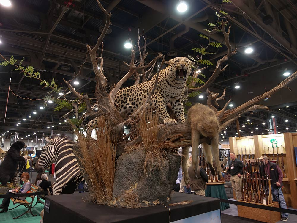 sci convention leopard baboon taxidermy