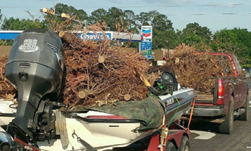 Is There Such A Thing As Too Many Brush Piles?
