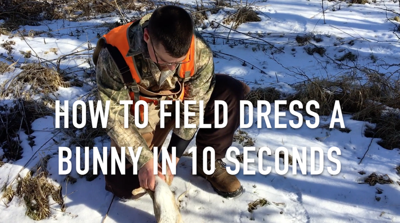 Video: How to Field Dress a Bunny in 10 Seconds