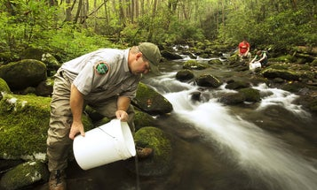 Blue Ribbon Panel: How to Increase Funds for State Fish & Wildlife Agencies