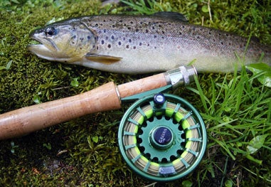 trout next to a fishing reel