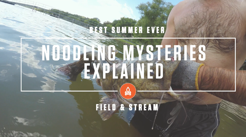 Noodling Mysteries—Explained