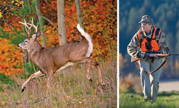 Deer Hunting Tips: How To Tag a Buck After You Bust Him