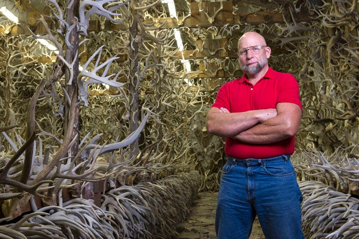 Shed Madness: The Antler Man and His Cathedral of Bone