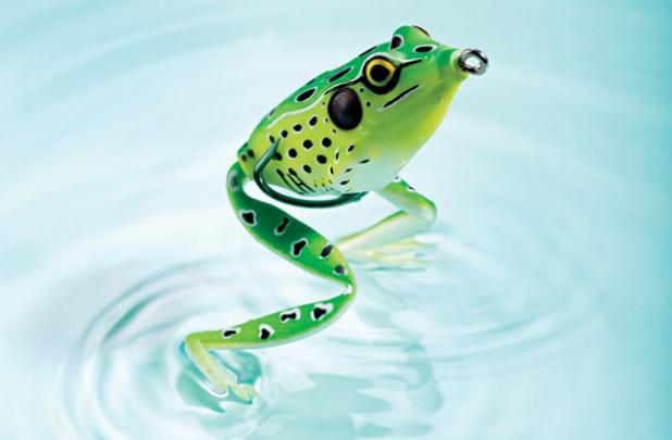 3 Killer Frog Rigs for Big Bass