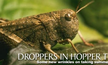 Droppers in Hopper Time
