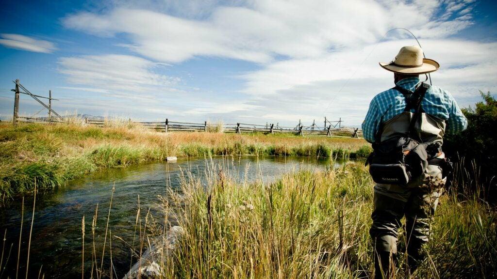 angler fishing mccoy spring creek montana