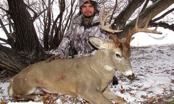 Rut Action on the Rise Out West