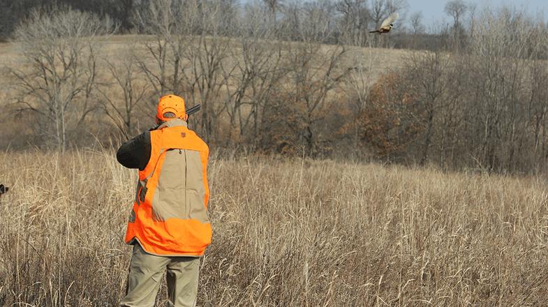 Rushing the Shot: Why Hunters Miss Pheasants