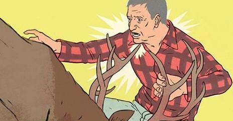 Close Calls: Gored By a Bull Elk